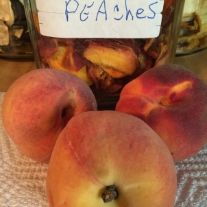 Recipes 101/Peaches